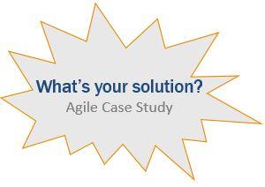agile case study